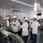 aplicaciones-del-detector-de-metales-industrial