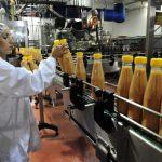 conozcan-la-importancia-de-los-detectores-de-metal-en-el-sector-alimentario