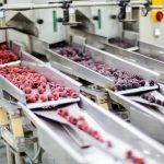 factores-basicos-a-considerar-para-elegir-detectores-de-metales-alimenticios